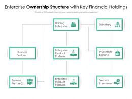 Enterprise Ownership Structure With Key Financial Holdings
