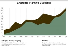 Enterprise Planning Budgeting Ppt Powerpoint Presentation Gallery Ideas Cpb