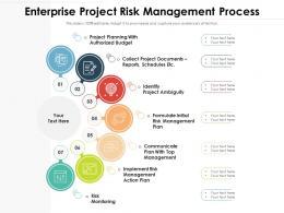 Enterprise Project Risk Management Process