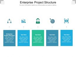 Enterprise Project Structure Ppt Powerpoint Presentation Model Vector Cpb