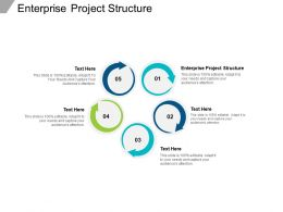 Enterprise Project Structure Ppt Powerpoint Presentation Styles Vector Cpb