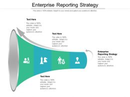 Enterprise Reporting Strategy Ppt Powerpoint Presentation Inspiration Slide Cpb