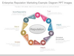 Enterprise Reputation Marketing Example Diagram Ppt Images