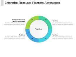 Enterprise Resource Planning Advantage Ppt Powerpoint Presentation Styles Graphics Template Cpb