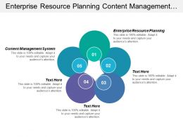Enterprise Resource Planning Content Management System Cost Recovery