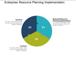 Enterprise Resource Planning Implementation Ppt Powerpoint Presentation Designs Cpb