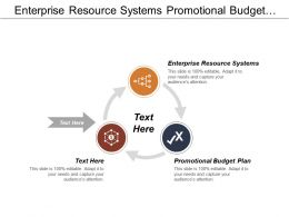 Enterprise Resource Systems Promotional Budget Plan Databases Marketing