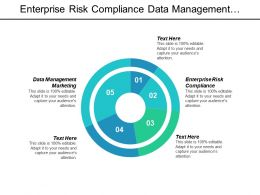 Enterprise Risk Compliance Data Management Marketing Sales Infographic Cpb
