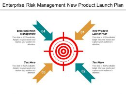 Enterprise Risk Management New Product Launch Plan Performance Evaluation Cpb
