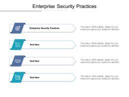 Enterprise Security Practices Ppt Powerpoint Presentation Model Format Cpb