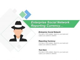 Enterprise Social Network Reporting Currency Secondary Ledgers Legal Entities
