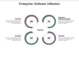 Enterprise Software Utilization Ppt Powerpoint Presentation Portfolio Professional Cpb
