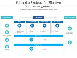 Enterprise Strategy For Effective Data Management