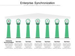 Enterprise Synchronization Ppt Powerpoint Presentation Show Themes Cpb