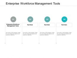 Enterprise Workforce Management Tools Ppt Powerpoint Presentation Pictures Gridlines Cpb
