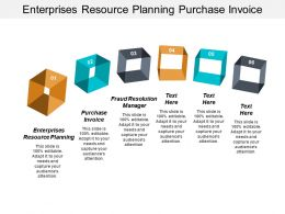 Enterprises Resource Planning Purchase Invoice Fraud Resolution Manager Cpb
