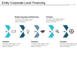 Entity Corporate Level Financing Ppt Powerpoint Presentation Gallery Sample Cpb