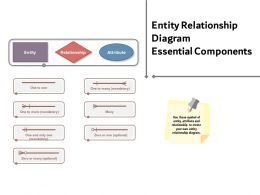 Entity Relationship Diagram Essential Components