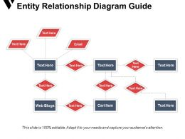 Entity Relationship Diagram Guide