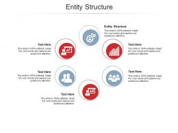 Entity Structure Ppt Powerpoint Presentation Gallery Structure Cpb