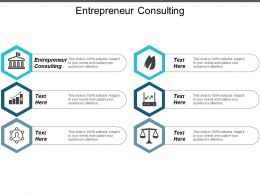 Entrepreneur Consulting Ppt Powerpoint Presentation Layouts Infographics Cpb