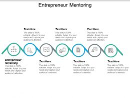 Entrepreneur Mentoring Ppt Powerpoint Presentation Styles Design Templates Cpb