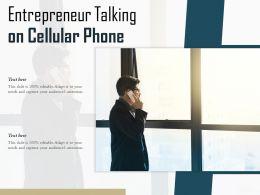 Entrepreneur Talking On Cellular Phone
