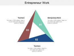 Entrepreneur Work Ppt Powerpoint Presentation Styles Display Cpb