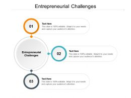 Entrepreneurial Challenges Ppt Powerpoint Presentation Styles Cpb