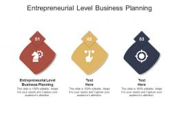 Entrepreneurial Level Business Planning Ppt Powerpoint Presentation Pictures Images Cpb