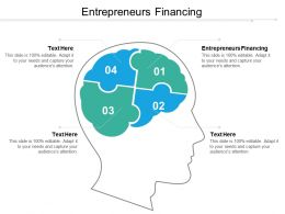 Entrepreneurs Financing Ppt Powerpoint Presentation Gallery Example Topics Cpb