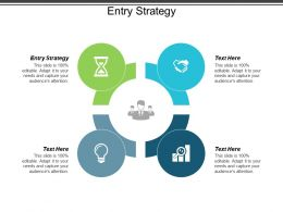 Entry Strategy Ppt Powerpoint Presentation Layouts Inspiration Cpb