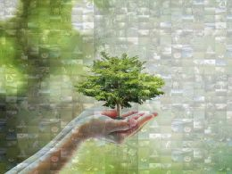 Environment Photo Mosaic Collage Saving Trees Ppt Example