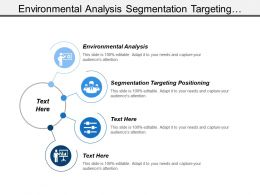 Environmental Analysis Segmentation Targeting Positioning Total Product Concept Branding