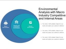 Environmental Analysis With Macro Industry Competitive And Internal Areas