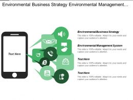 Environmental Business Strategy Environmental Management System Ansoff Matrix