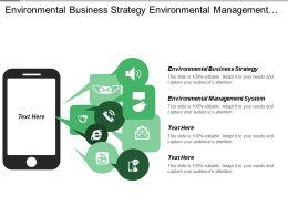 Environmental Business Strategy Environmental Management System Ansoff Matrix