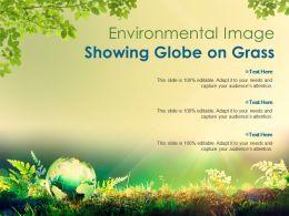 Environmental Image Showing Globe On Grass