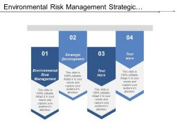 Environmental Risk Management Strategic Development Business Developments Economic Development Cpb
