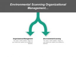Environmental Scanning Organizational Management Information Systems Policy Formulation