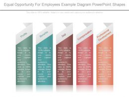 equal_opportunity_for_employees_example_diagram_powerpoint_shapes_Slide01
