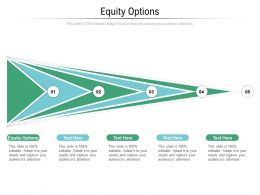 Equity Options Ppt Powerpoint Presentation Portfolio Themes Cpb
