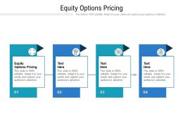 Equity Options Pricing Ppt Powerpoint Presentation Summary Slide Cpb