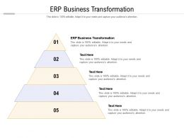 ERP Business Transformation Ppt Powerpoint Presentation Outline Graphic Images Cpb