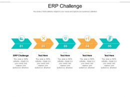 ERP Challenge Ppt Powerpoint Presentation Inspiration Slide Portrait Cpb
