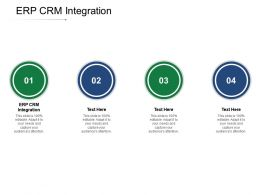 ERP CRM Integration Ppt Powerpoint Presentation Styles Display Cpb