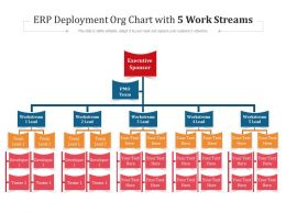 ERP Deployment Org Chart With 5 Work Streams