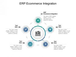 ERP Ecommerce Integration Ppt Powerpoint Presentation Professional Topics Cpb