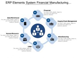Erp Elements System Financial Manufacturing Products