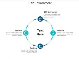 ERP Environment Ppt Powerpoint Presentation File Show Cpb